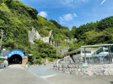 【竜ヶ岩洞】浜松に東海最大級の鍾乳洞。何万年もの月日が織りなす神秘的な景色に癒される~静岡おすすめスポット~